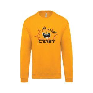 hímzett környakas gyerek pulóver, crazy, őrült, fun, cool
